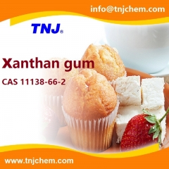 Xanthan gum suppliers suppliers