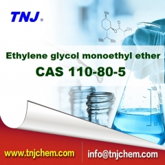 Ethylene glycol monoethyl ether CAS 110-80-5 suppliers