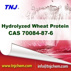 China Hydrolyzed Wheat Protein suppliers, CAS 70084-87-6 suppliers