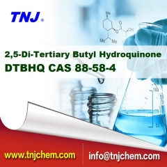 buy 2,5-Di-Tertiary Butyl Hydroquinone DTBHQ suppliers price