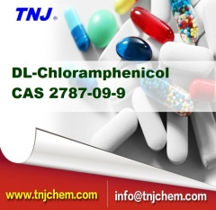 buy DL-chloramphenicol Synthomycin suppliers price