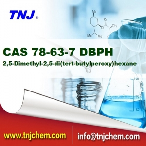 CAS 78-63-7, 2,5-Dimethyl-2,5-di(tert-butylperoxy)hexane BPDH/DBPH suppliers price suppliers