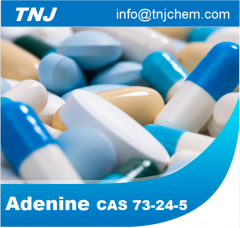 Buy Adenine 98% at best price from China factory suppliers suppliers