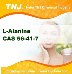 L-Alanine price suppliers