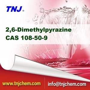 2,6-Dimethylpyrazine CAS 108-50-9 suppliers