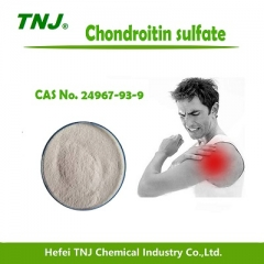 Chondroitin 4-sulfate CAS 24967-93-9 suppliers