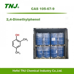 2,4-Dimethylphenol CAS 105-67-9 suppliers