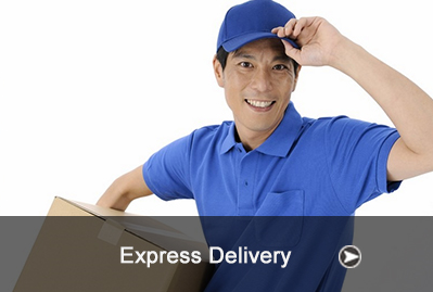 COURIER EXPRESS DELIVERY